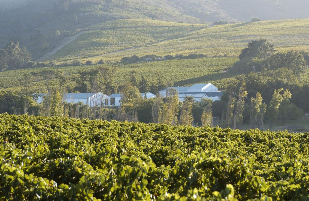 Hartenberg Wine Estate