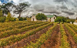Le Riche Wines