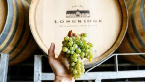Longridge Wine Estate & Restaurant