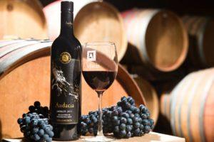 Audacia Wines