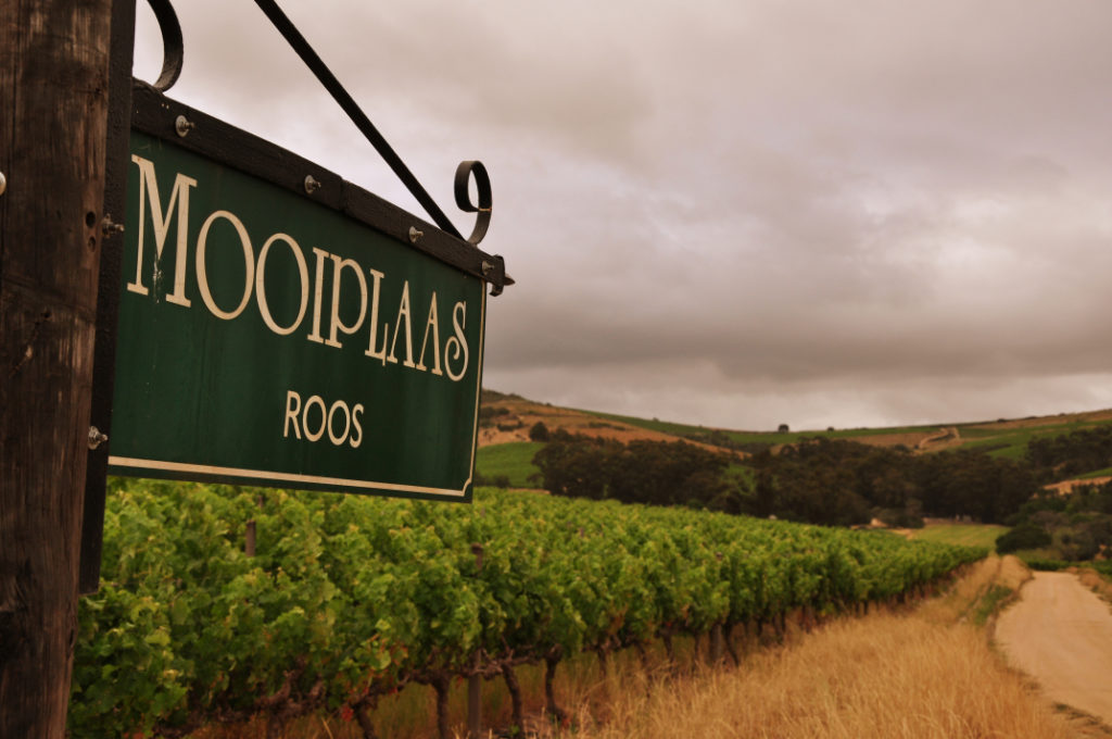 Mooiplaas Wine Estate & Private Nature Reserve